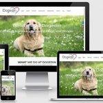 web designer portfolio 041